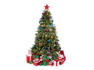 Vánoční provoz 2017