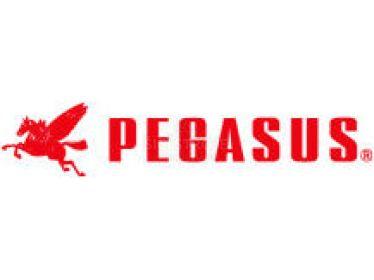 Zoznam náhradných dielov pre Pegasus - parts list