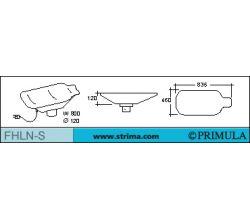 PRIMULA FHLN-S