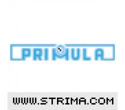 PRIMULA TR24.1